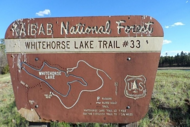 White Horse Lake Campground: Getaway For Fishing And Fun!