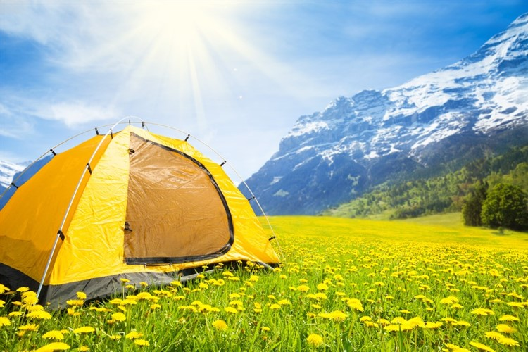 Best 8 Person Tents - Foot Sloggers