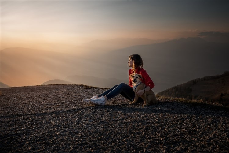 Hiking with Your Dog: A Practical Guide