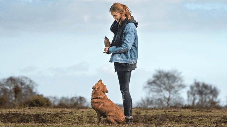 Hiking with your dog 1