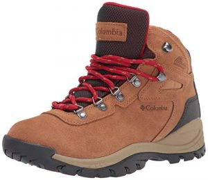 Women's Newton Ridge Plus Waterproof Amped Hiking Shoe