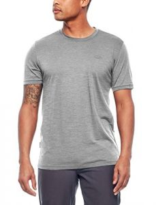 Icebreaker Merino Men's Spector Short Sleeve T-Shirt