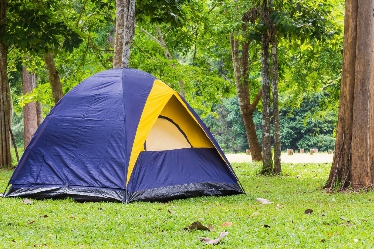The Best Dome Tents of 2021
