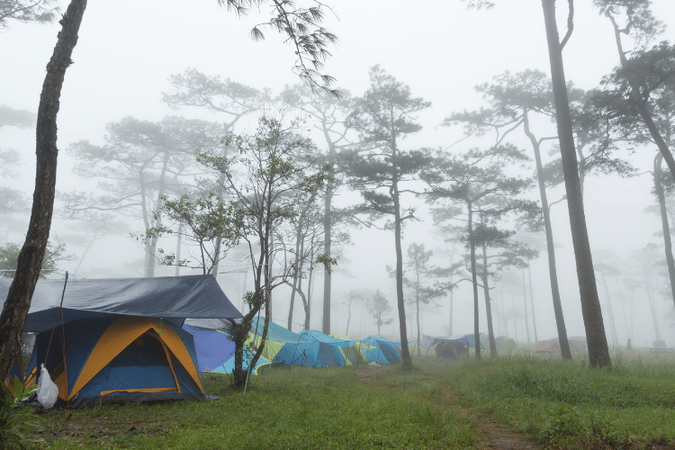 best tent for heavy rains